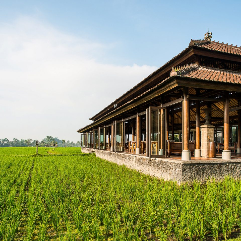 Dining Grounds Hotels Luxury grass sky building rural area agriculture plantation house