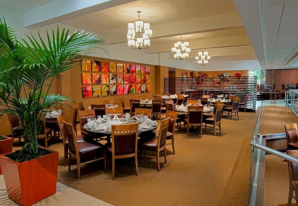 chair restaurant Dining function hall café Resort Lobby buffet convention center cafeteria