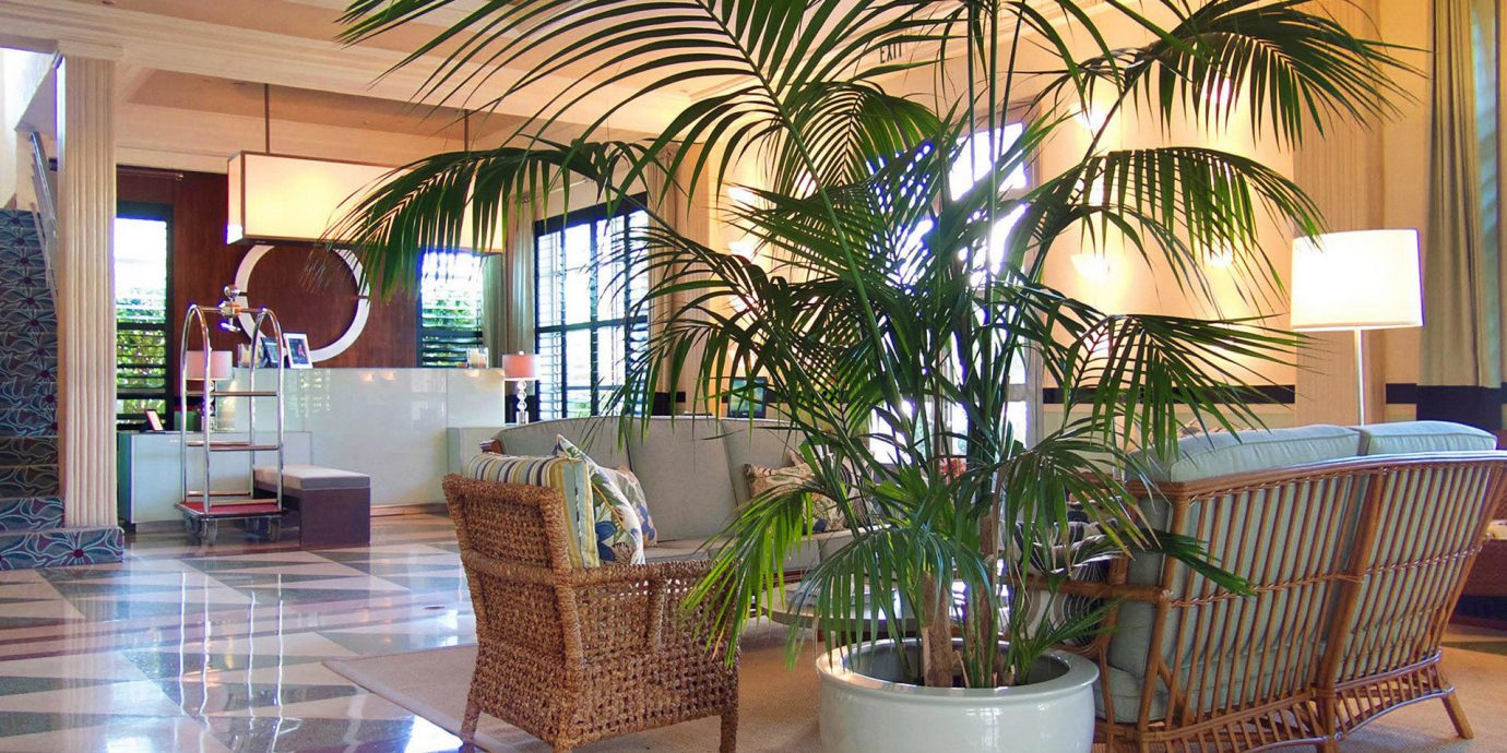 Lobby property condominium plant Resort home restaurant living room Villa Dining arecales tree