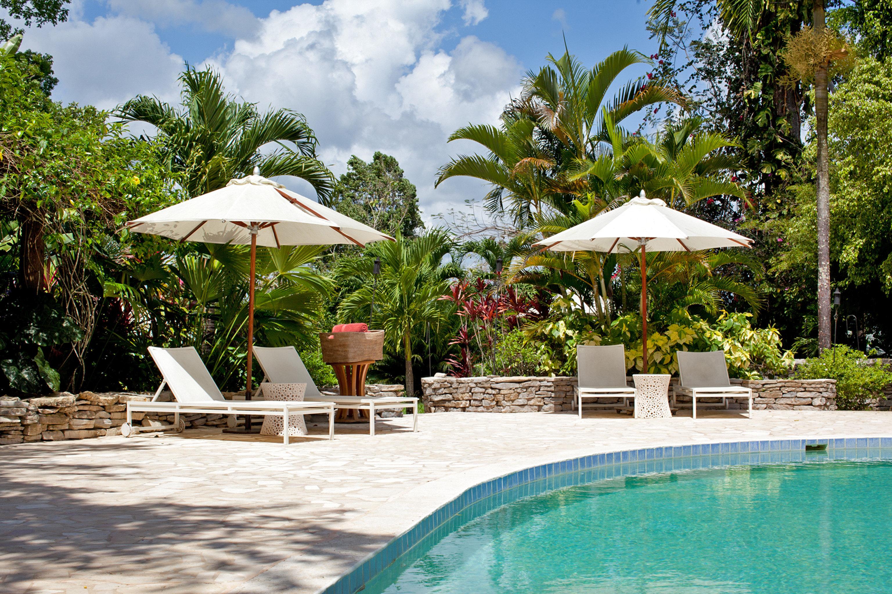 Lodge tree umbrella Resort Pool chair swimming pool building leisure swimming lawn green Villa caribbean backyard Dining Village shade lined