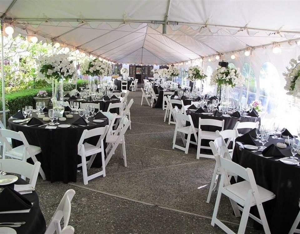chair Dining banquet ceremony function hall wedding wedding reception Party floristry aisle restaurant centrepiece rehearsal dinner set dining table