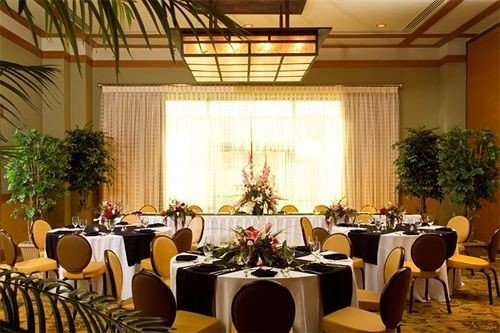 chair function hall banquet Dining restaurant conference hall ceremony ballroom Party convention center plant meeting wedding reception set