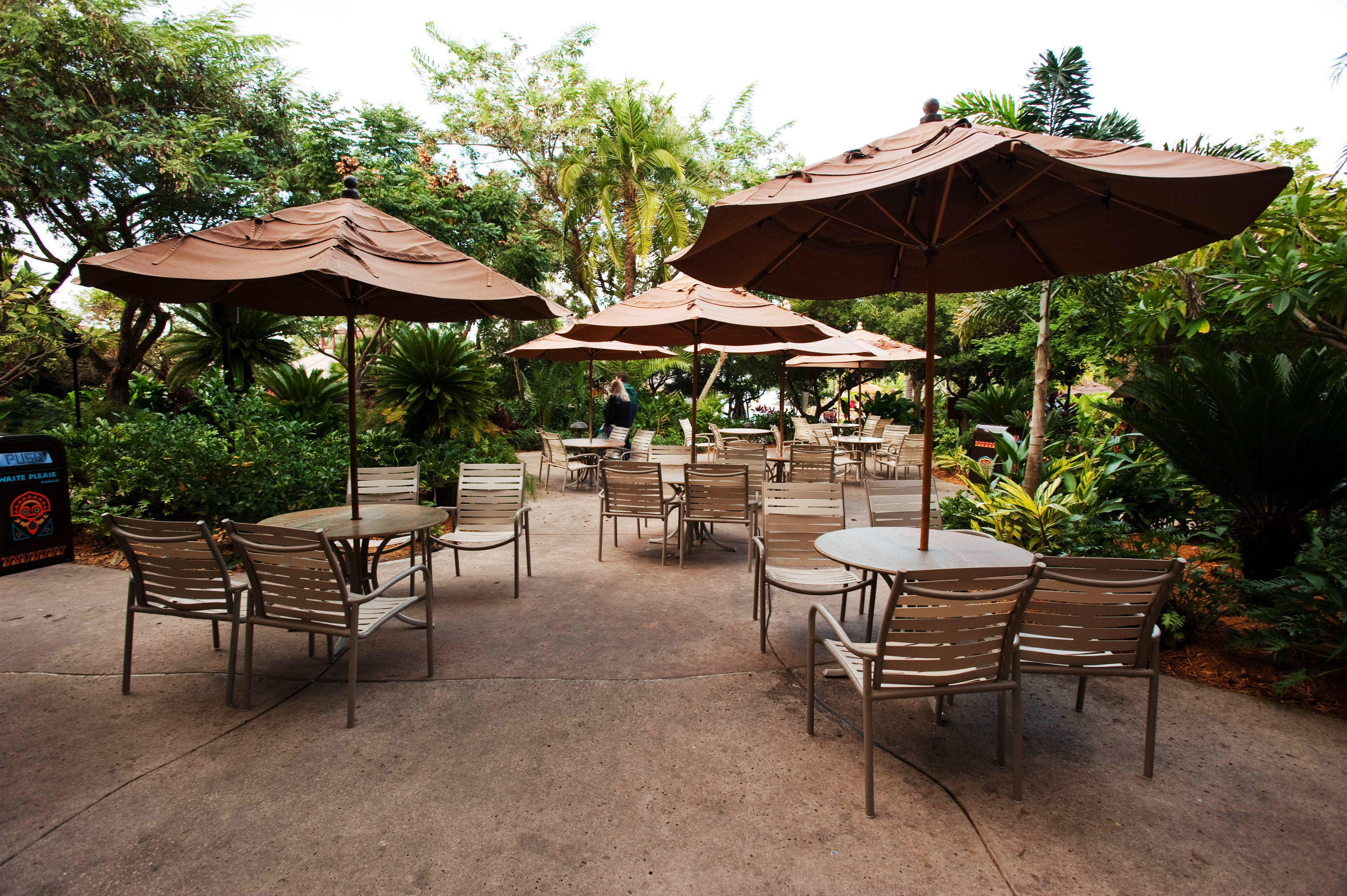 tree umbrella chair set Resort lawn outdoor structure restaurant backyard Patio Dining pavilion gazebo shade lined