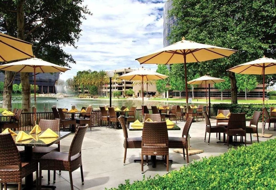 tree chair umbrella ground Dining leisure lawn Resort accessory restaurant set eco hotel outdoor structure shade lined day