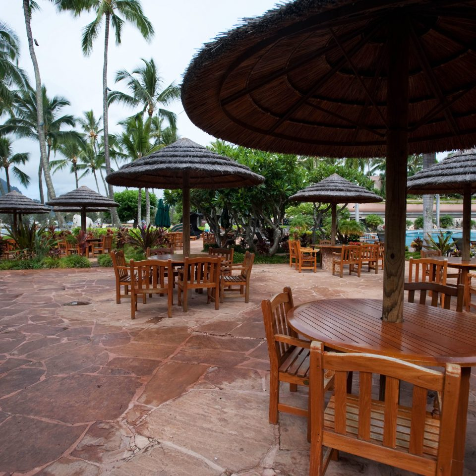 tree ground umbrella chair leisure property Resort hacienda outdoor structure Dining shade