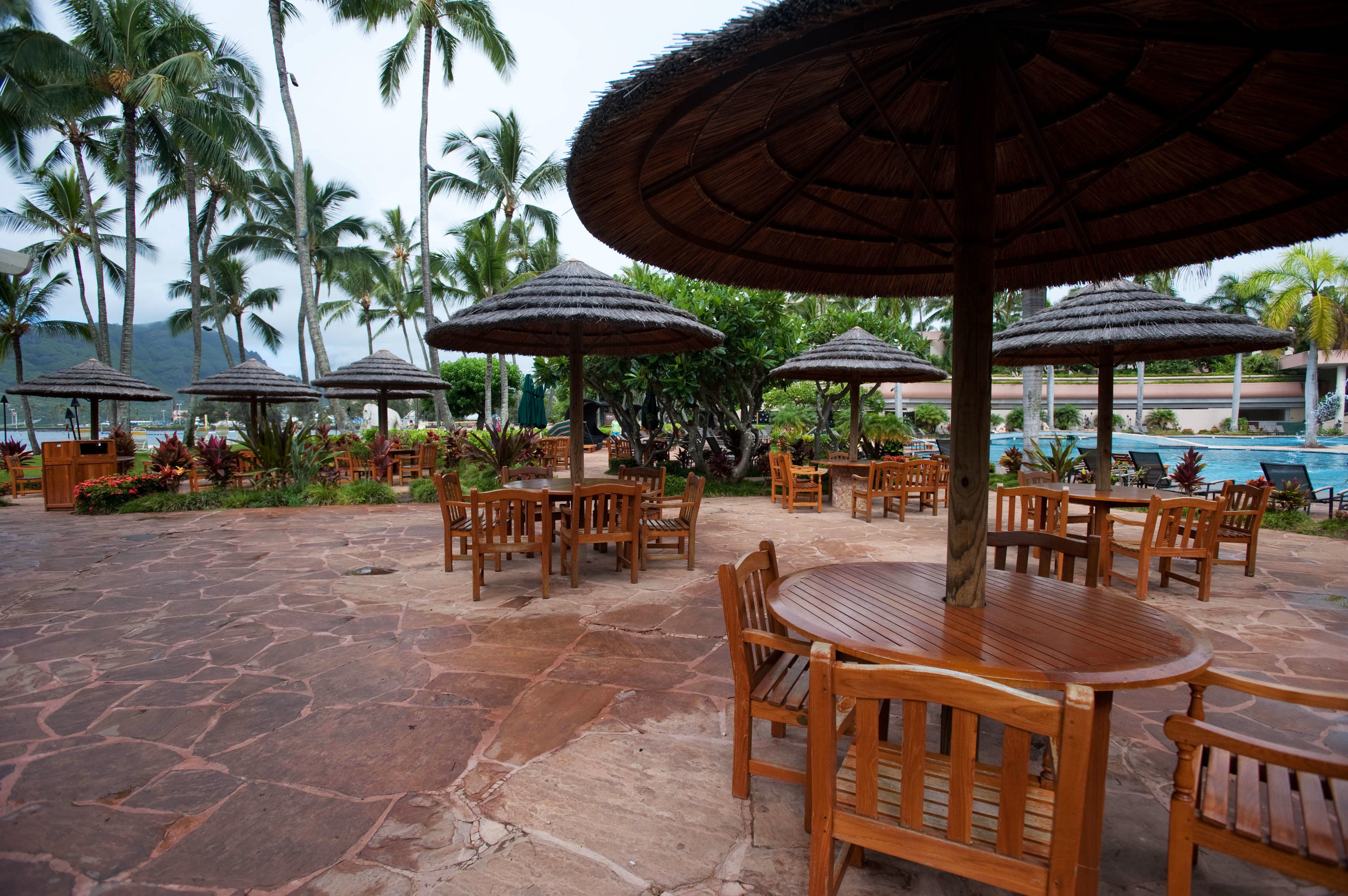 tree ground umbrella chair leisure property Resort hacienda outdoor structure Dining shade