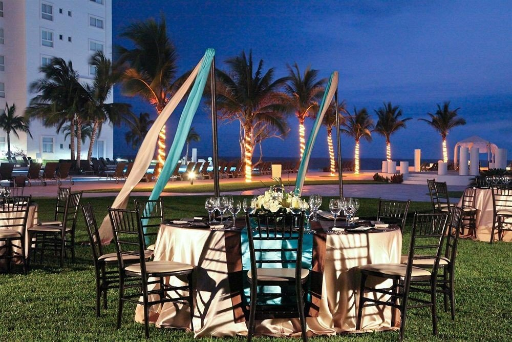 tree chair palm umbrella leisure Resort lawn Dining plant palace restaurant set