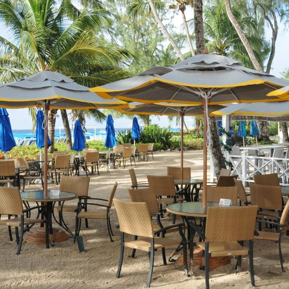 chair tree umbrella Resort Dining lawn restaurant outdoor structure leisure set