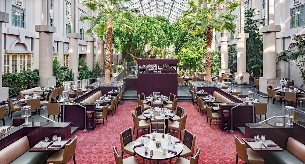 chair restaurant plaza Dining Resort