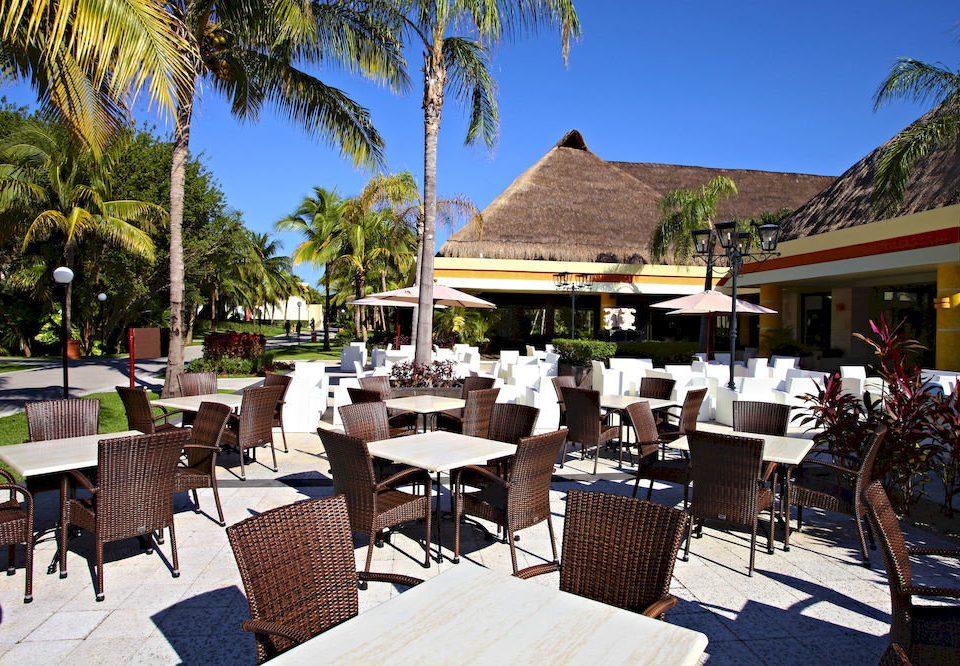 tree sky chair restaurant Resort Dining