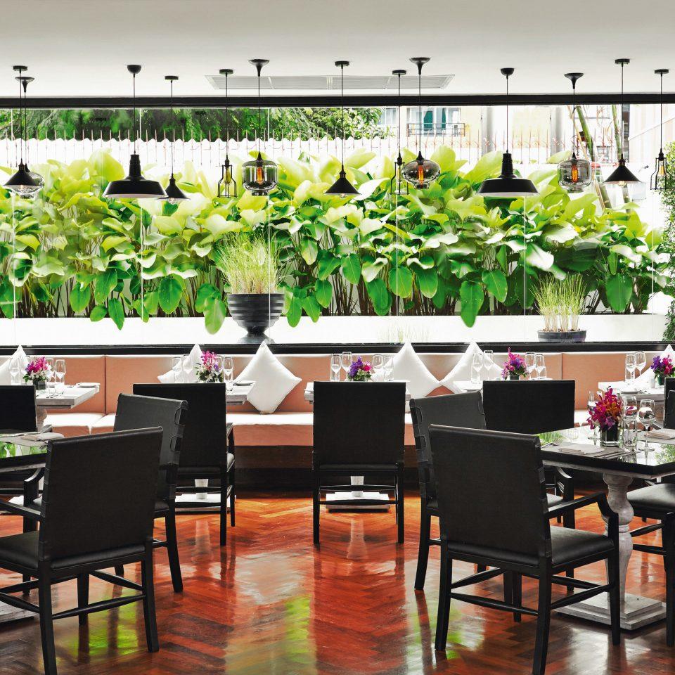 floristry restaurant dining table