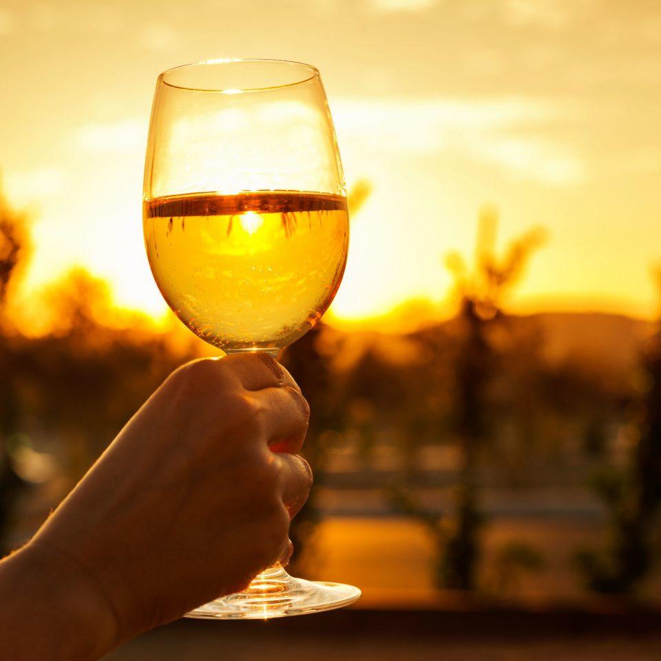 color yellow wine light alcoholic beverage night morning Drink alcohol wine glass evening sunlight lighting stemware glass flower sense macro photography beer liqueur distilled beverage