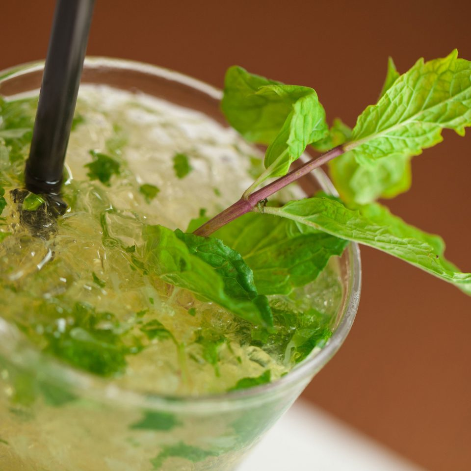 mojito mint julep food plant Drink vegetable herb cocktail smoothie