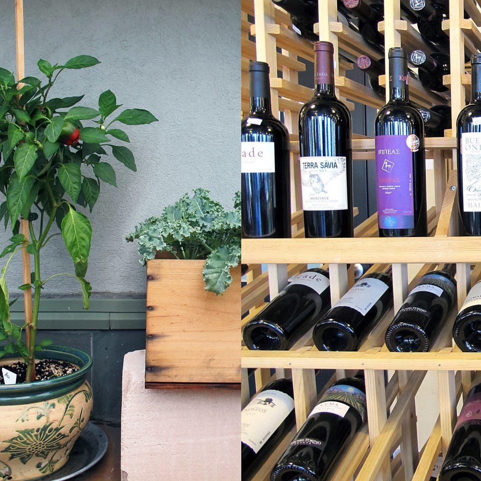 Drink Inn man made object wine liqueur