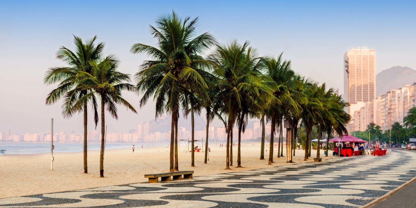Travel Tips sky outdoor tree palm palm tree arecales plant Sea shore scene City Beach daytime road date palm Coast vacation sand water tourism walkway lined sandy day