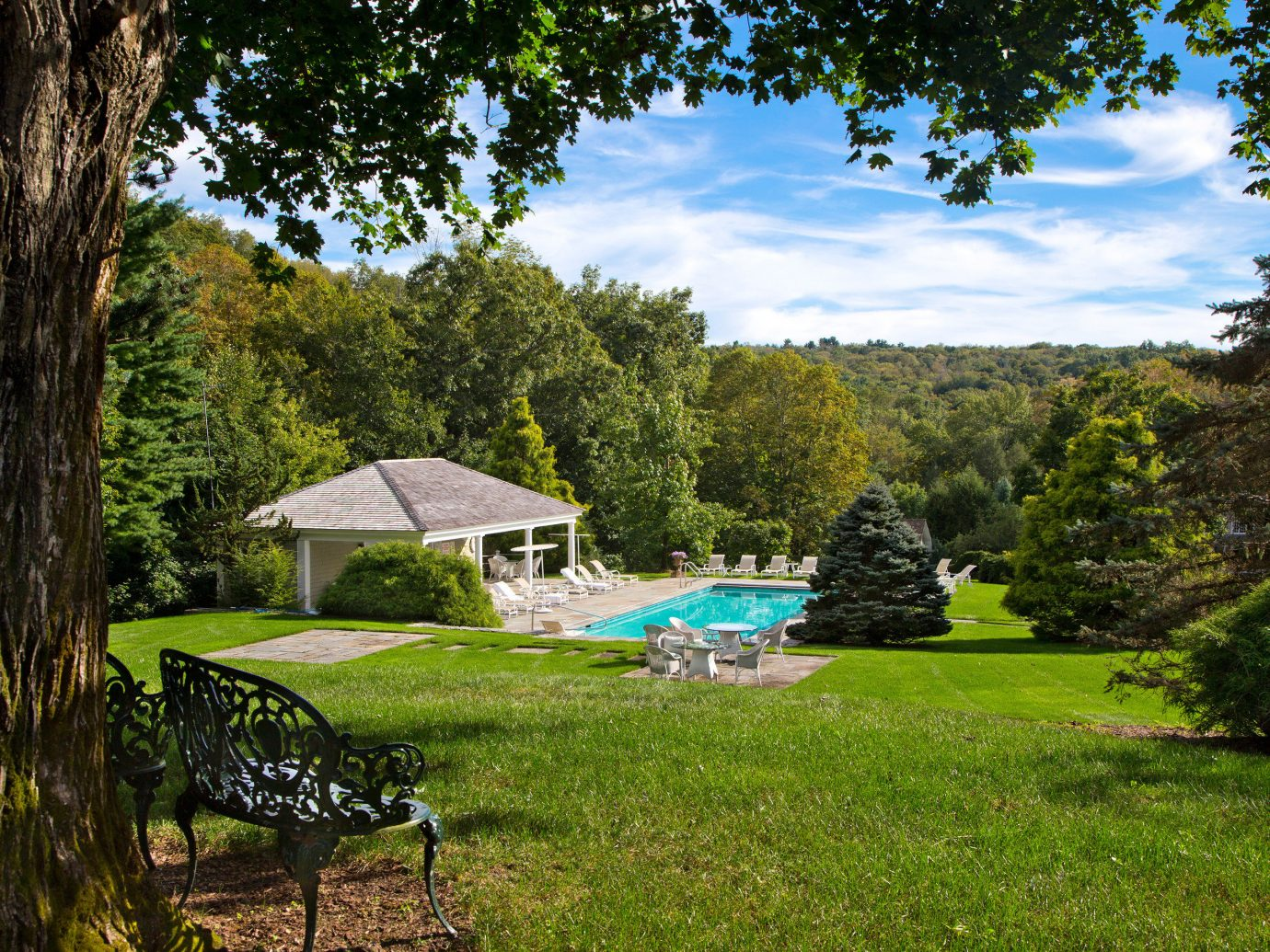 Country Pool Romance Scenic views Trip Ideas Weekend Getaways tree grass outdoor park Nature green woodland estate backyard Garden grassy outdoor recreation meadow Forest rural area lawn camping yard seat area lush shade