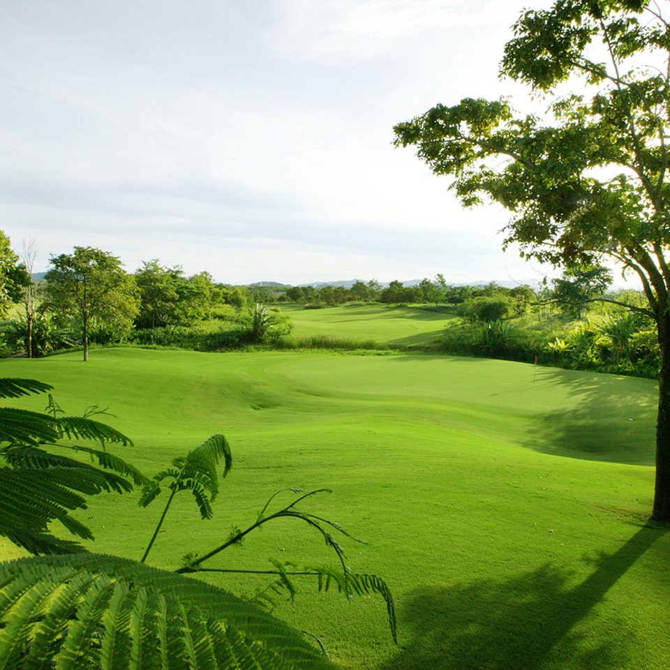 Eco Elegant Golf Jungle Nature Outdoor Activities Sport Tropical tree grass sky habitat plant structure green grassland vegetation sport venue botany field golf course golf club meadow lawn hill rural area grassy lush