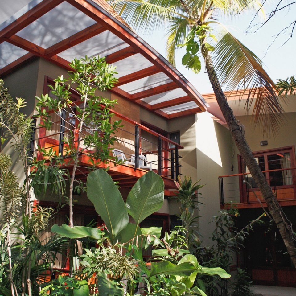 Eco Exterior Grounds Jungle Modern Rustic tree house plant botany Resort flower arecales home Garden outdoor structure restaurant tropics cottage