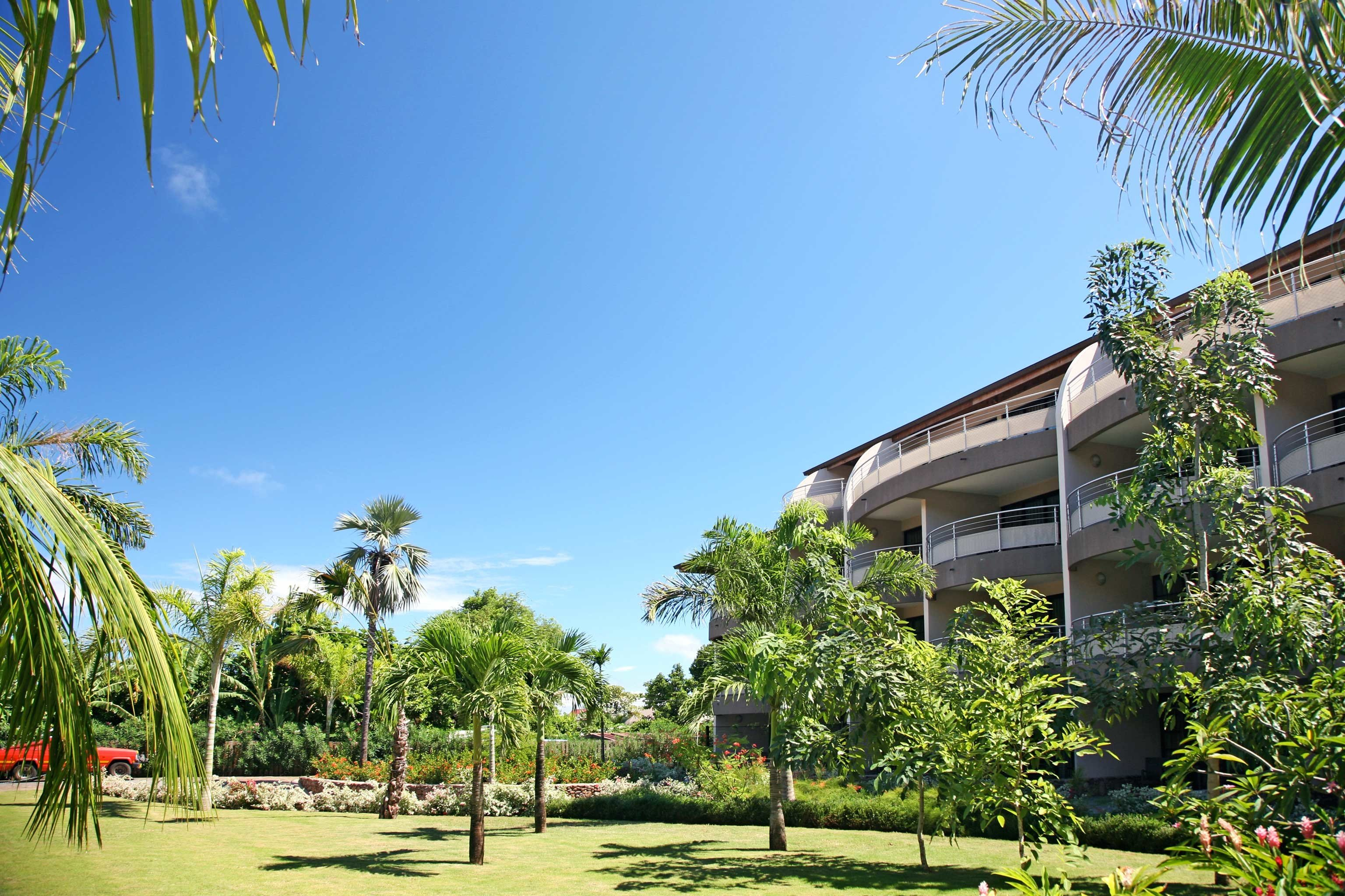 Eco Grounds tree sky palm plant Resort residential area arecales palm family Garden lined sunny shade day