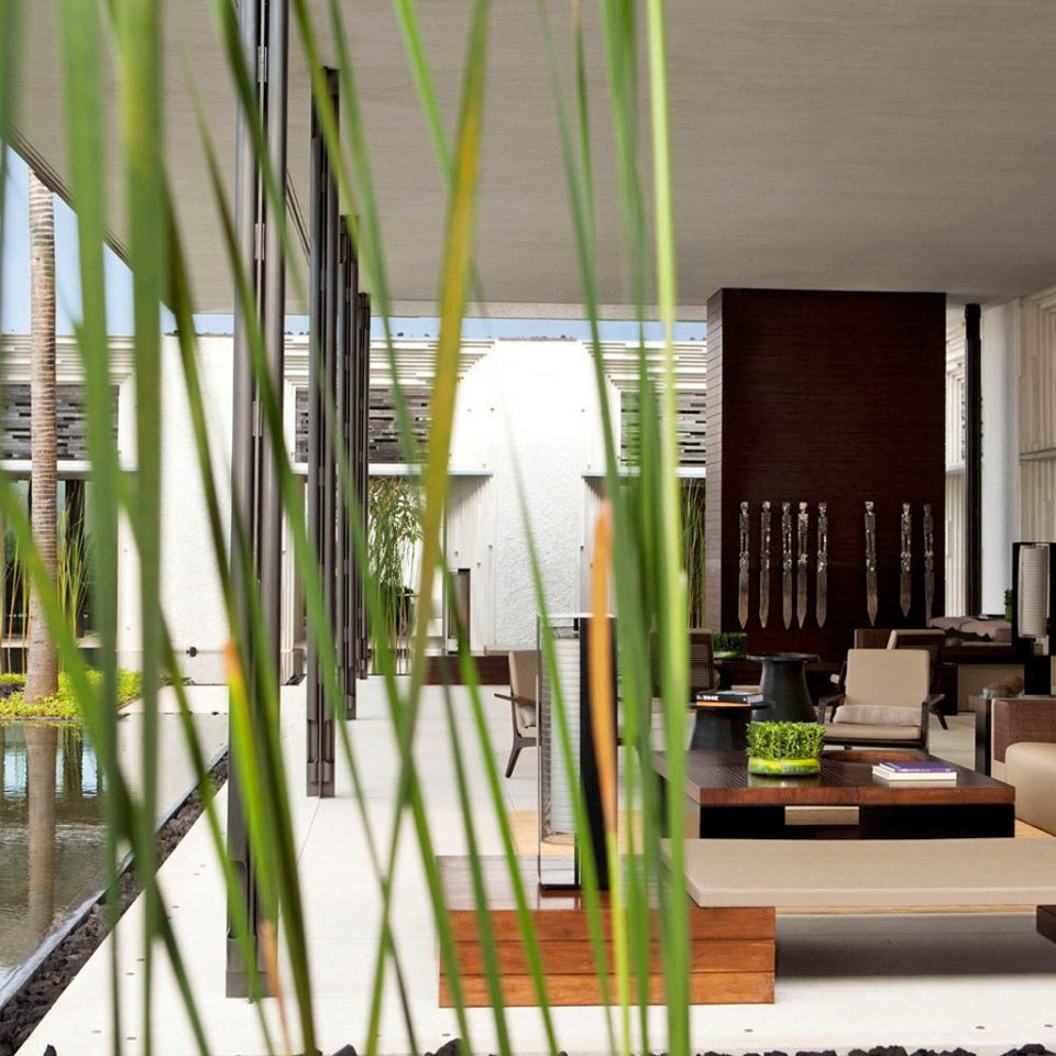 Eco Luxury Modern property bamboo home condominium