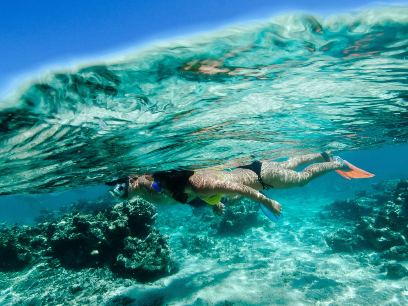 Trip Ideas water outdoor swimming marine biology sports underwater water sport Ocean Sea biology outdoor recreation diving wind wave snorkeling wave