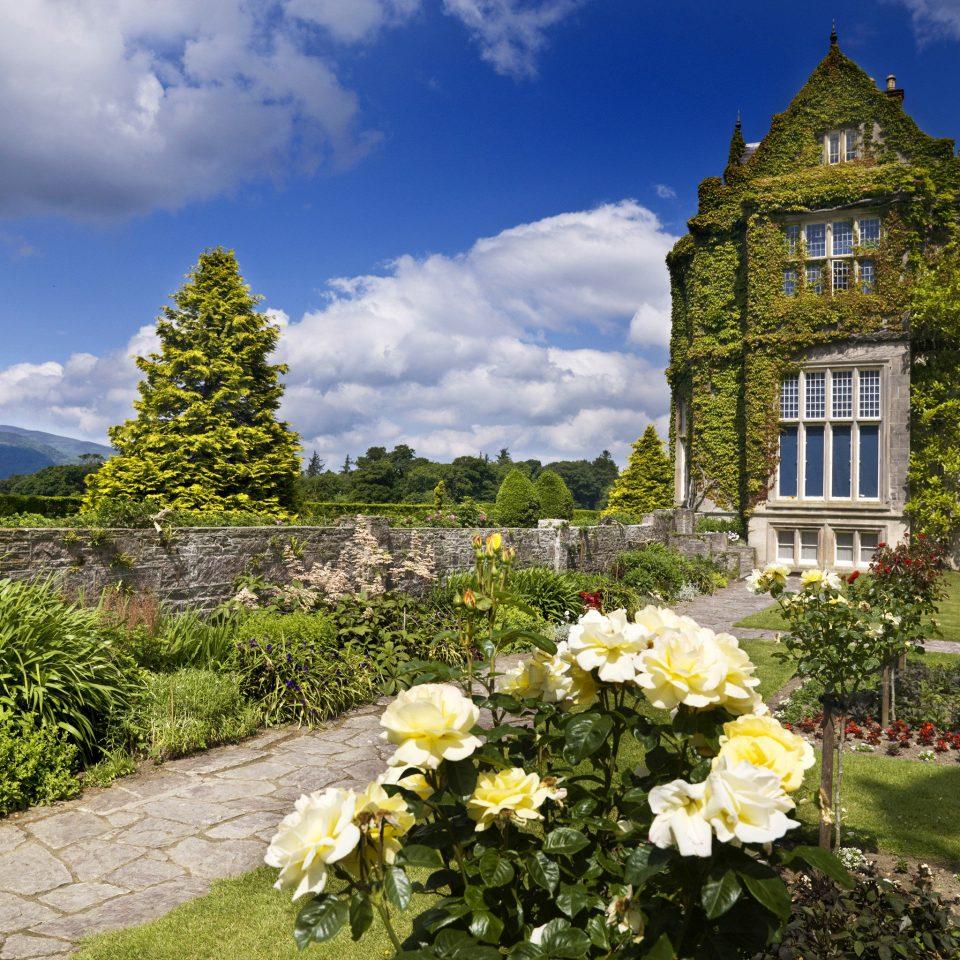 Elegant Exterior Garden Grounds Historic Honeymoon flower grass sky tree landscape château plant lawn stone surrounded bushes