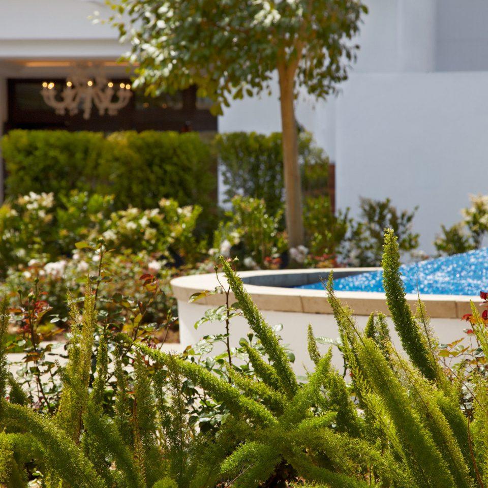 Elegant Exterior Hot tub/Jacuzzi Luxury Modern Pool tree flora green flower botany Garden plant grass floristry backyard lawn yard landscape architect