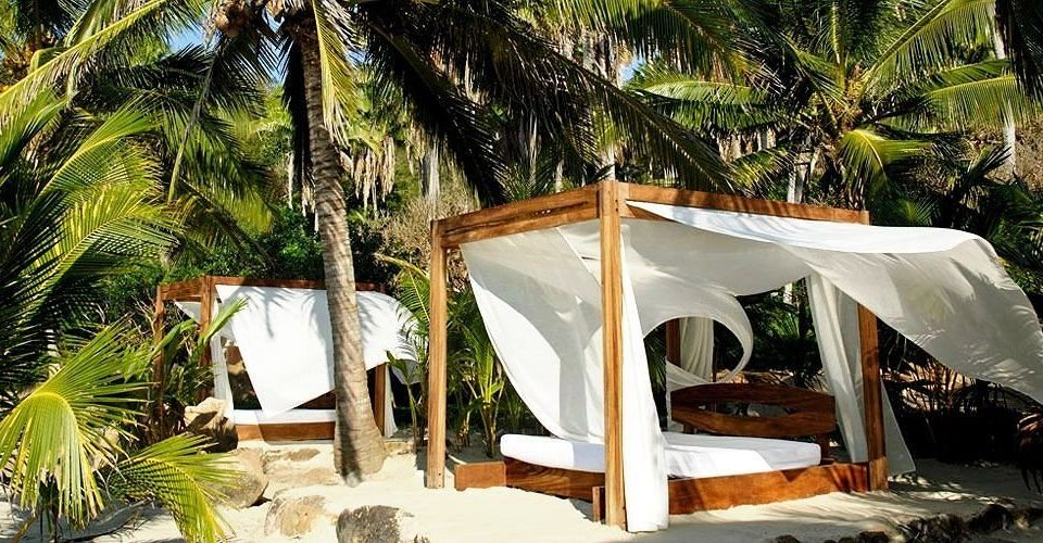 Elegant Lounge Modern tree chair Resort plant palm Jungle Villa eco hotel tent shade hut lined sandy surrounded