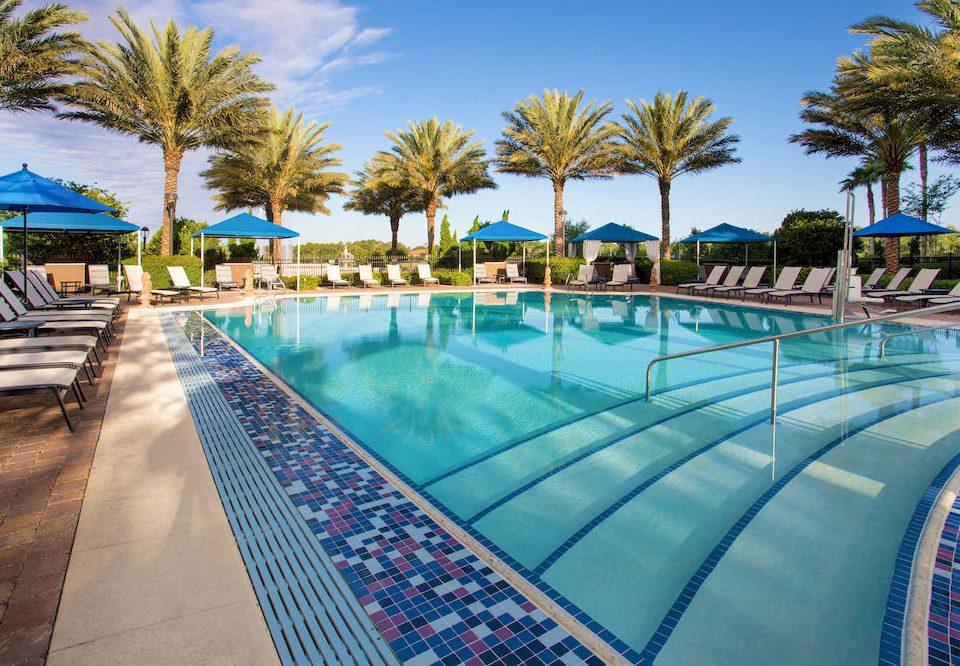 Elegant Lounge Luxury Modern Pool sky tree swimming pool leisure palm property blue Resort condominium colorful Water park lined