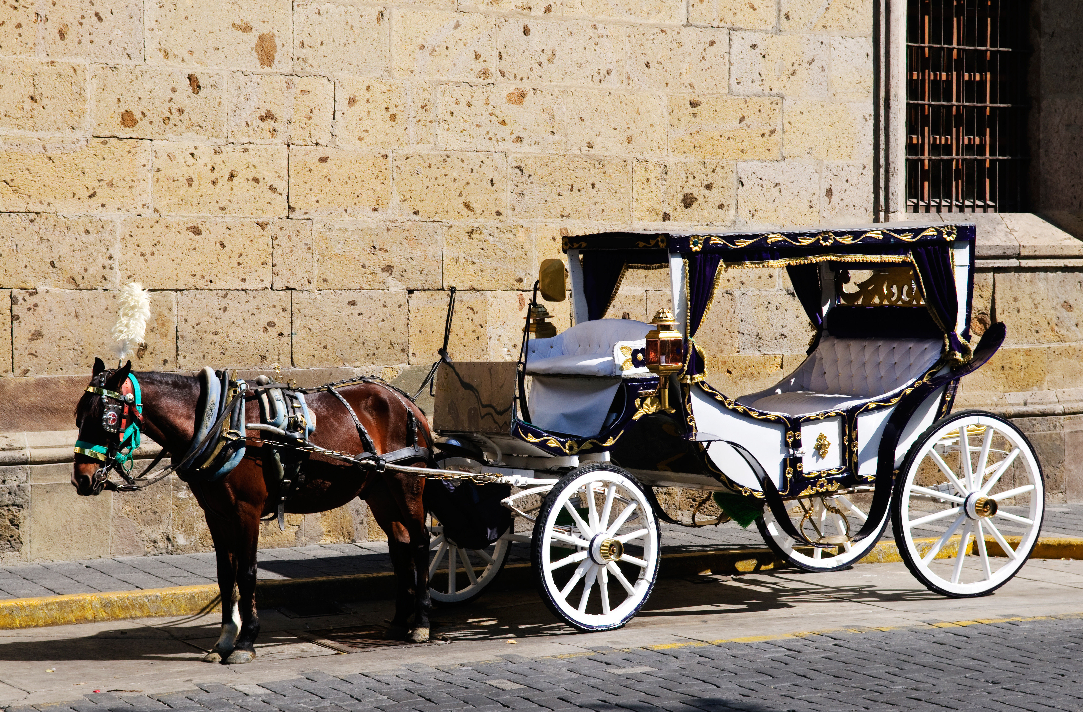 Entertainment Play Resort horse carriage building pulling road drawn horse and buggy street transport ground vehicle cart horse harness land vehicle horse-drawn vehicle car pulled attached curb