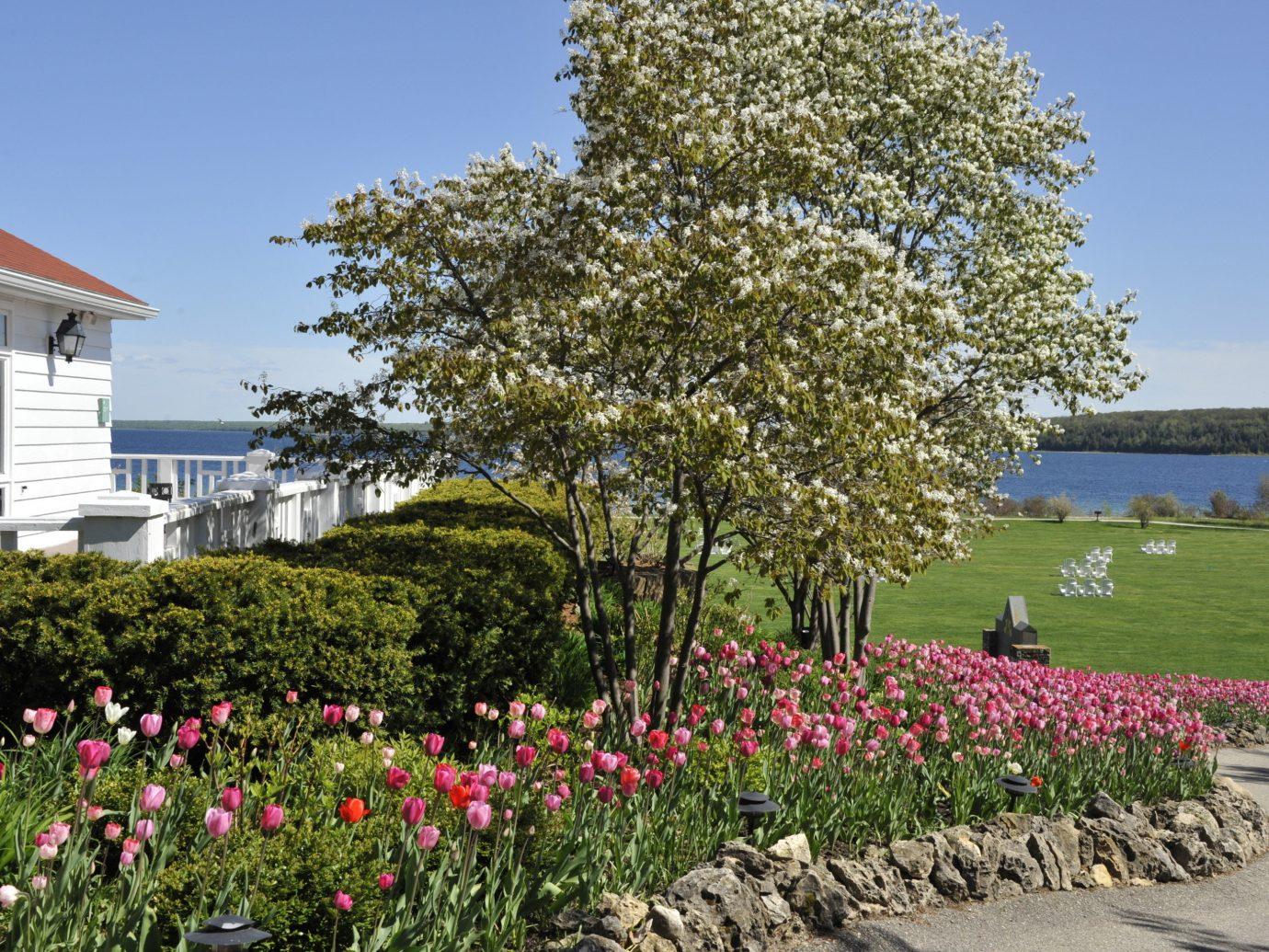 Hotels Lakes + Rivers tree outdoor sky flower plant flora botany land plant woody plant Garden flowering plant estate park blossom shrub lawn