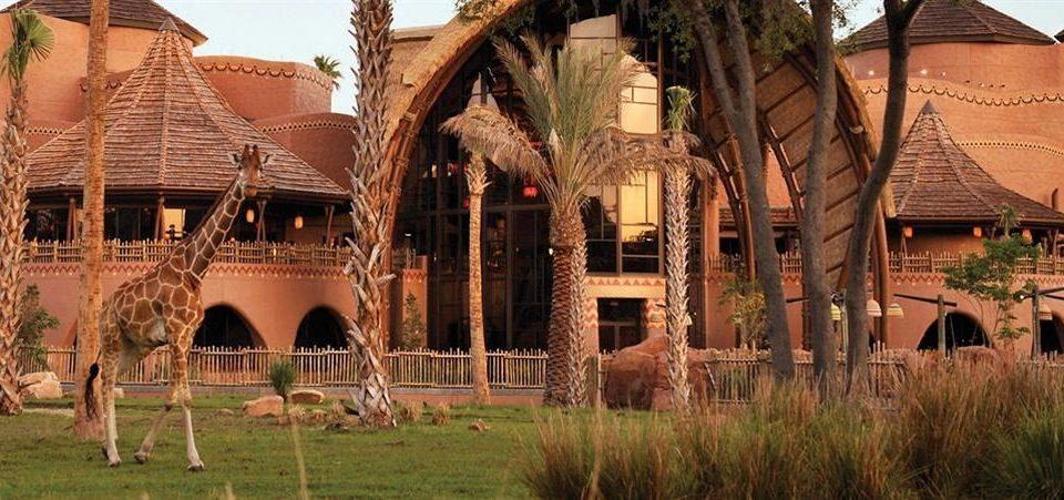 Exterior Family Resort grass building Village arch colonnade