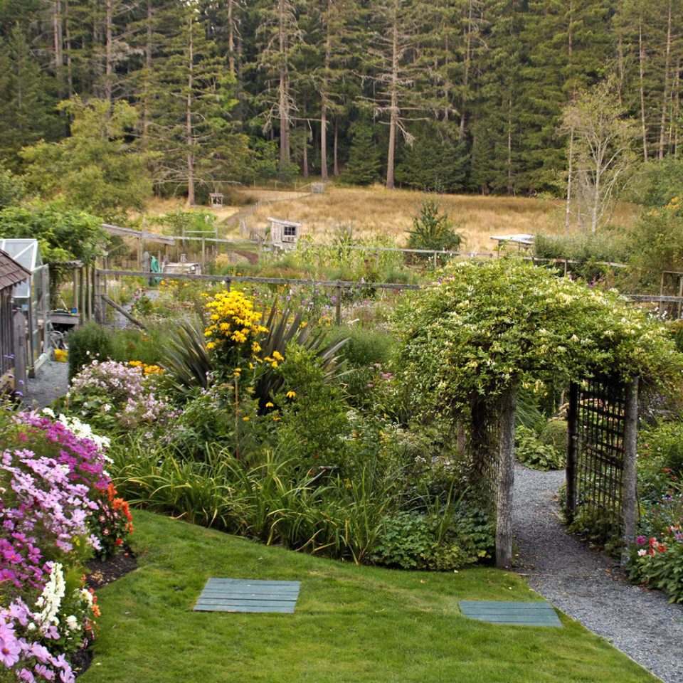 Exterior Grounds Modern Outdoors Rustic Scenic views Sport Wellness tree grass Garden flower flora botany plant woodland yard backyard landscape lawn shrub botanical garden autumn surrounded lush stone Forest