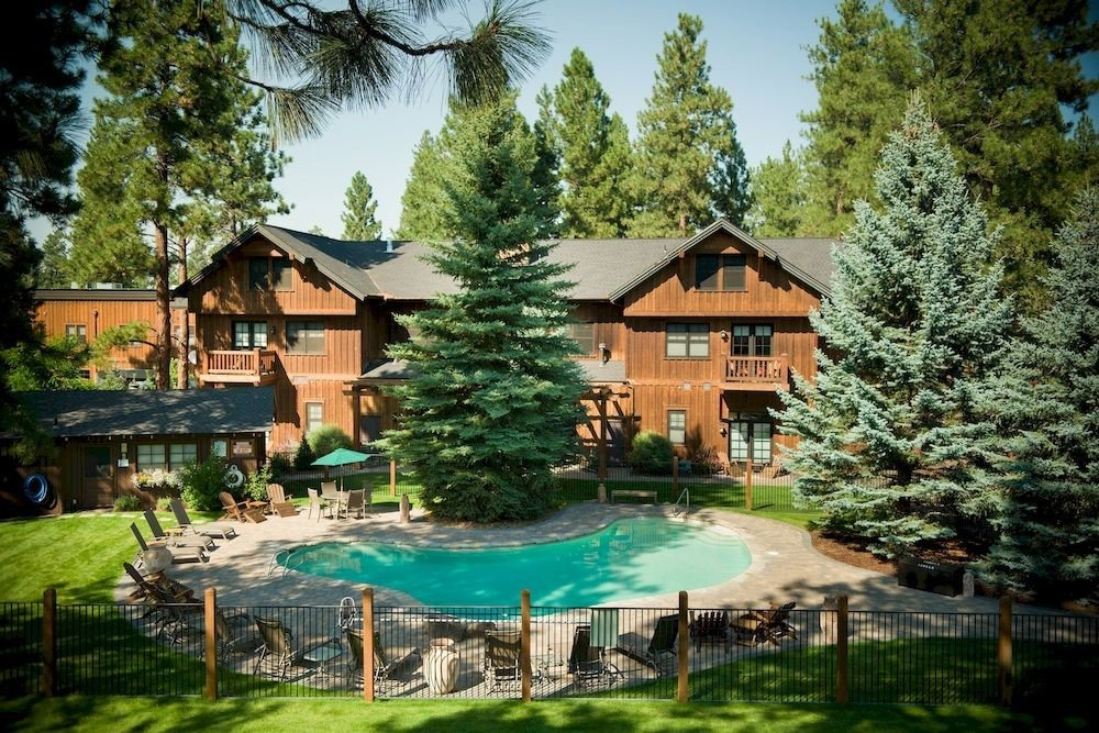 Exterior Lodge Pool Rustic tree house property Resort home cottage backyard Villa eco hotel old surrounded plant residential Forest Garden wooded lush