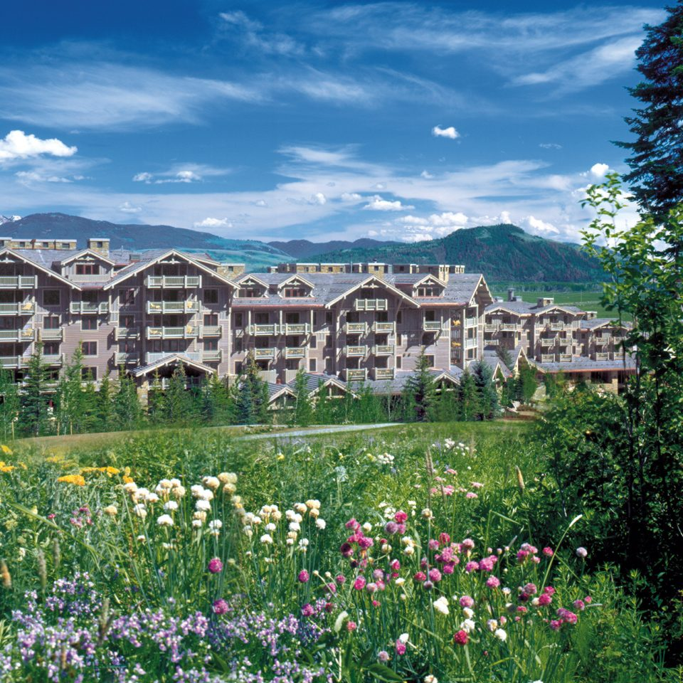 Exterior Grounds Mountains Natural wonders Resort Rustic Scenic views tree flower Town residential area meadow mountain Garden mountain range Village bushes surrounded crowd