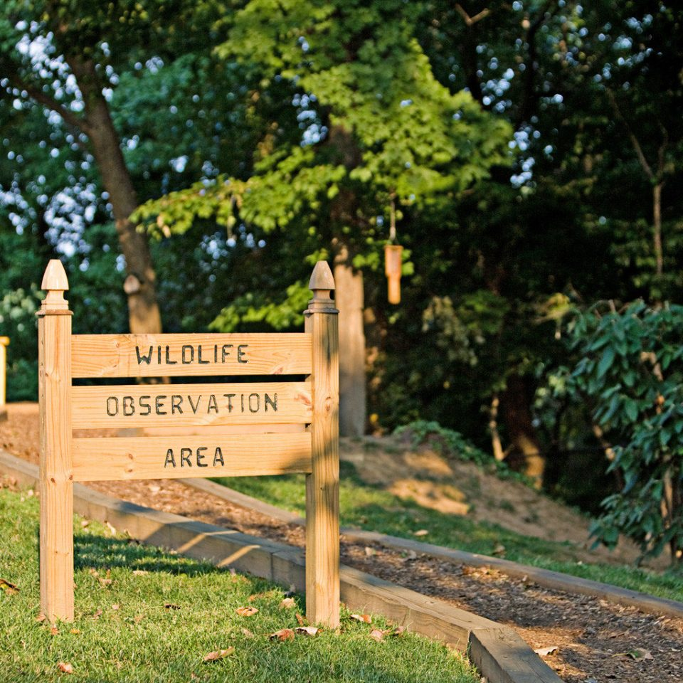 Exterior Nature Outdoors Waterfront tree grass ground sign community trail park Playground Garden plant
