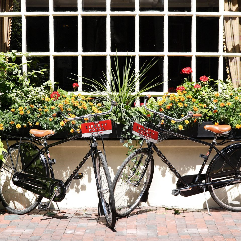 Exterior Hotels building bicycle parked brick sidewalk vehicle flower sports equipment stone curb scooter