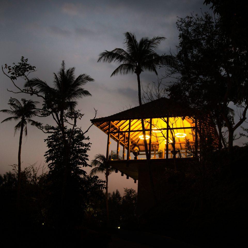 Exterior Luxury Romantic Tropical tree sky night darkness light Sunset evening palm cloud plant morning dusk sunlight lighting yellow dawn Sun sunrise street light distance