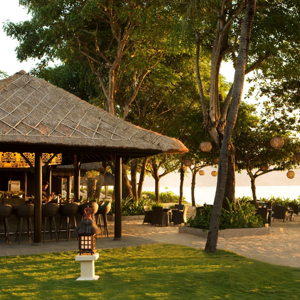 Exterior Resort tree grass restaurant arecales Village