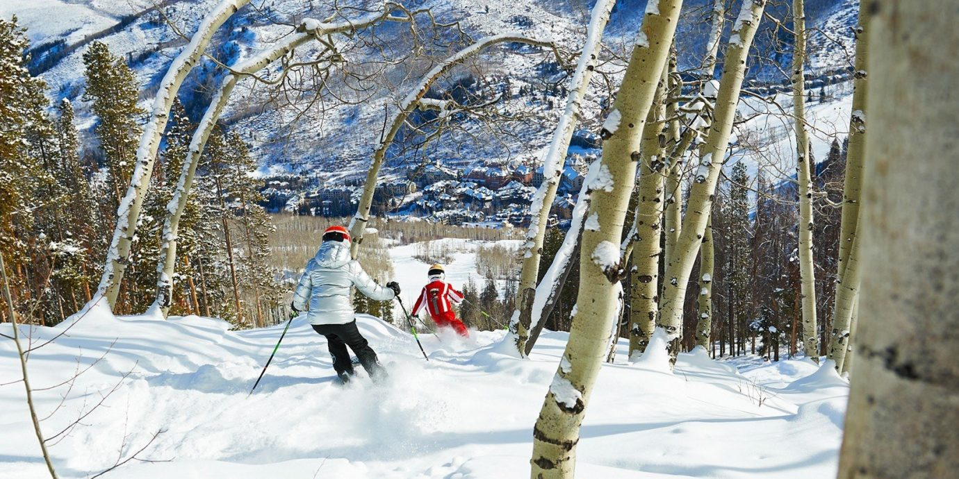 Food + Drink snow outdoor skiing tree Winter footwear person weather season freezing slope snowshoe cross spring