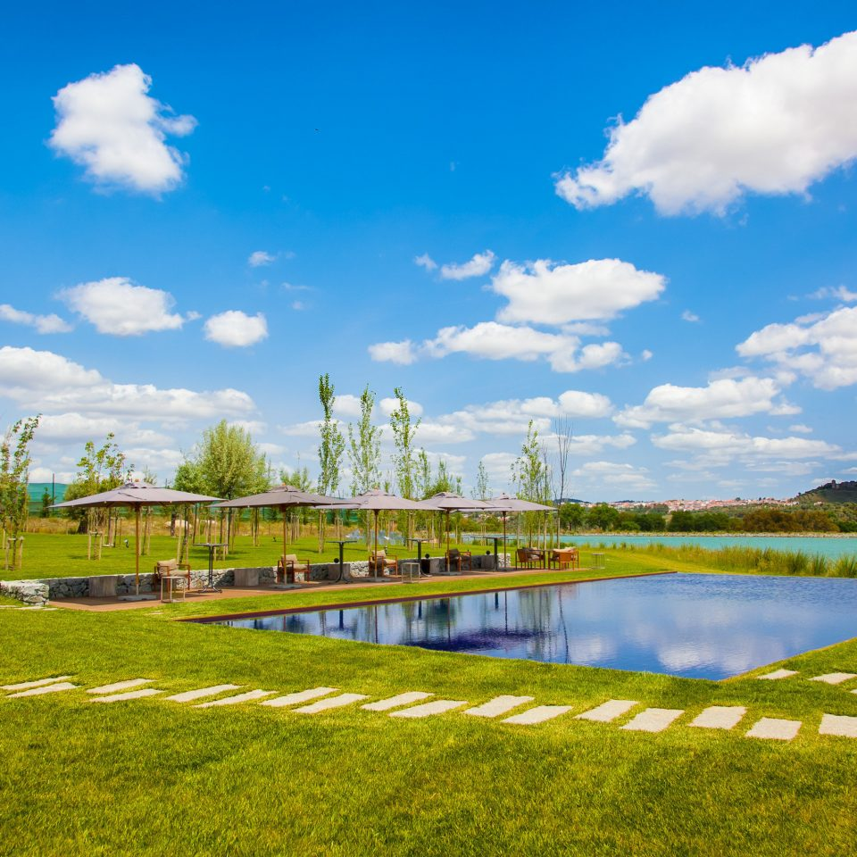 grass sky structure field sport venue meadow rural area landscape flower agriculture lawn park Farm stadium reservoir panorama day