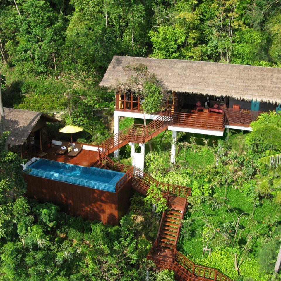 tree habitat wilderness hut Forest rural area Jungle agriculture rainforest Farm Garden plant bushes surrounded