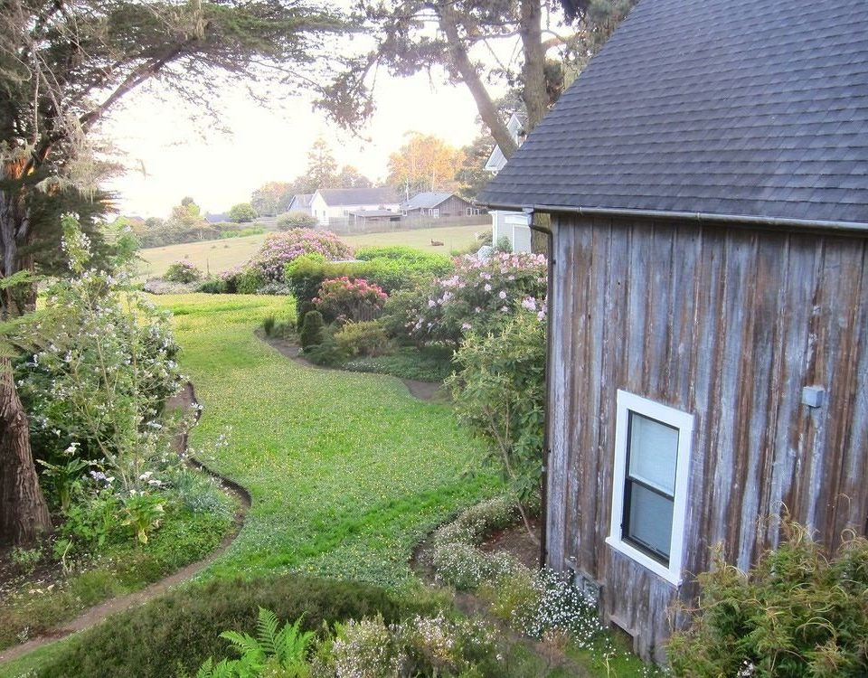 tree grass building property house home cottage rural area shed yard backyard hut Garden outdoor structure Farm farmhouse