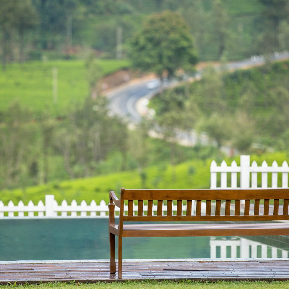 Fence tree grass bench park wooden rural area outdoor structure