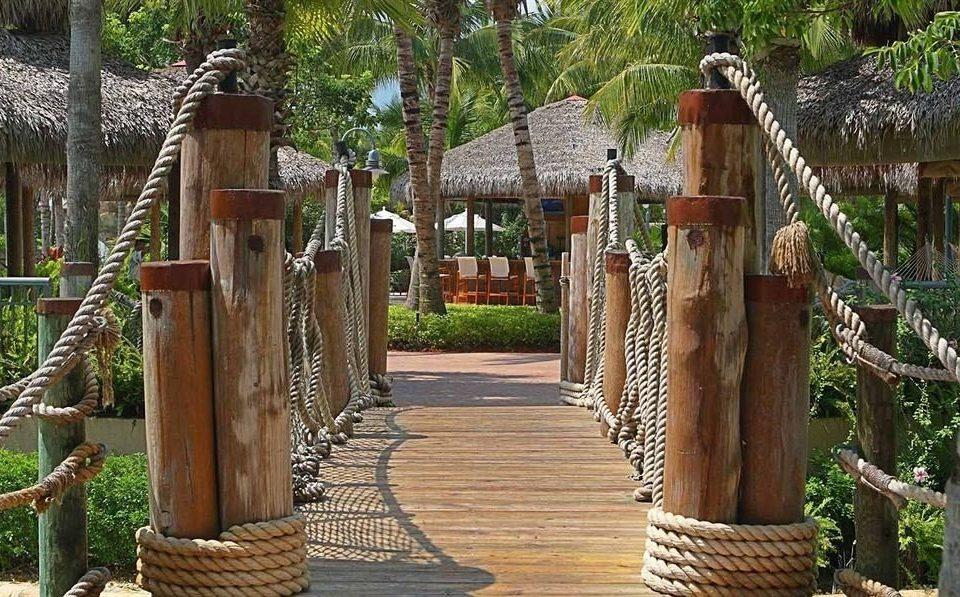 tree outdoor structure backyard wooden Garden Fence pergola walkway yard Playground
