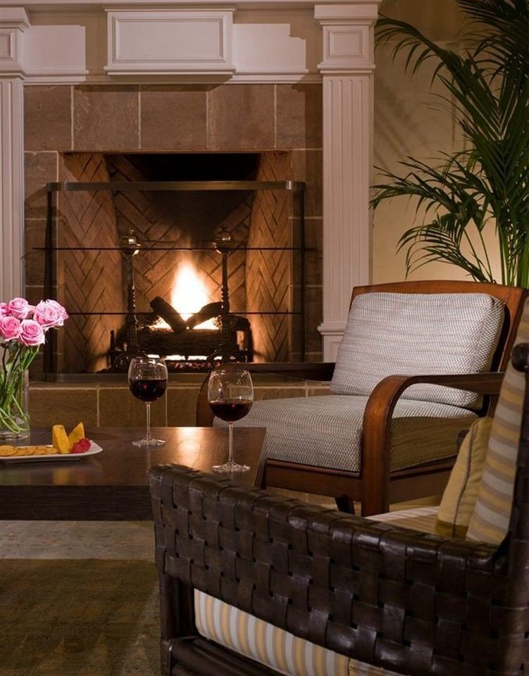 Lounge Luxury Modern property living room home hardwood hearth Fireplace lighting cottage mansion farmhouse