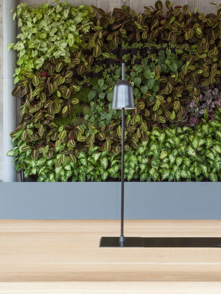 green lighting flower flooring
