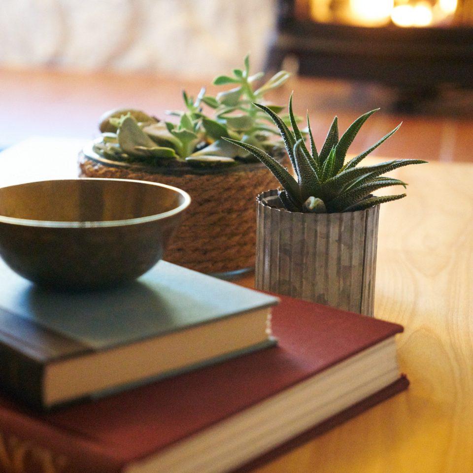plant wooden flooring living room