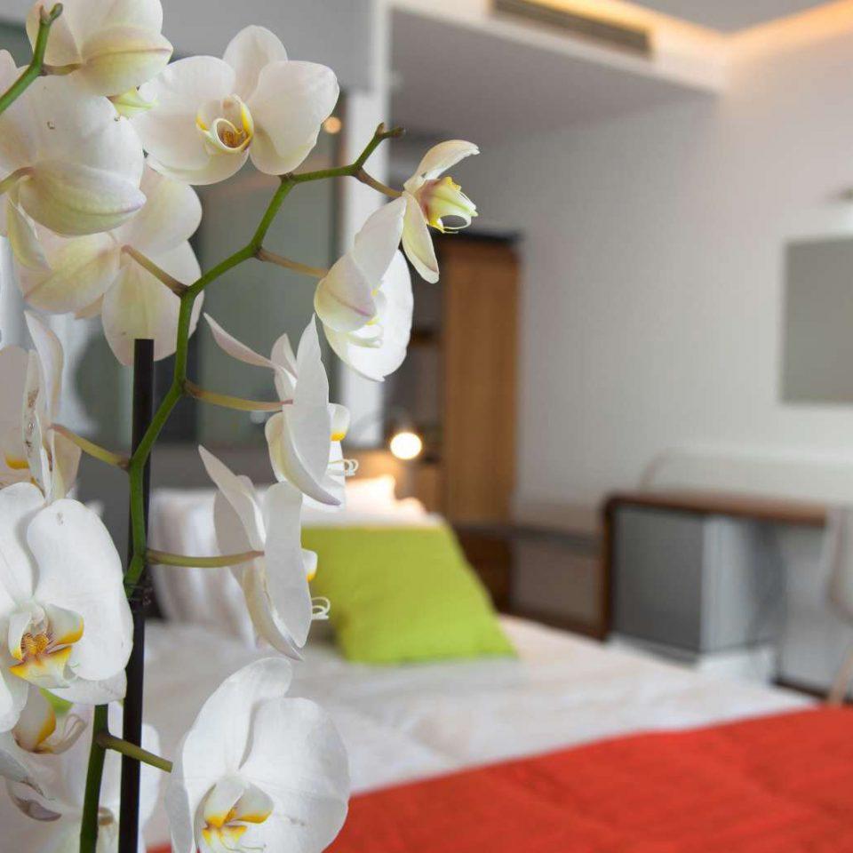flower plant floristry flower arranging white floral design