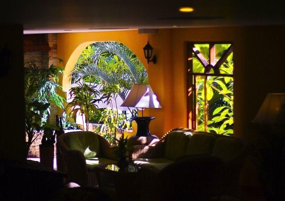light night lighting restaurant flower